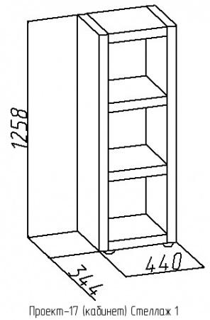Стеллаж-1 Проект-17 1