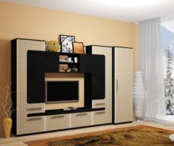 Модульная гостиная Сона 1
