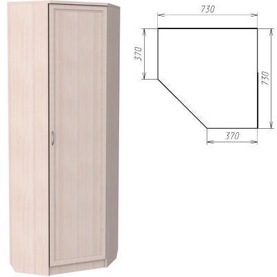 Угловой шкаф 402 5