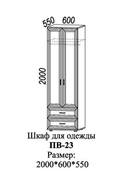 Шкаф для одежды с 2-мя ящиками ПВ-23 3