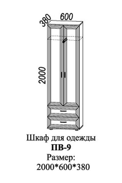 Шкаф для одежды с 2-мя ящиками ПВ-9 3